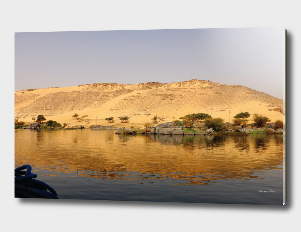 The golden beauty of the desert over the Nile