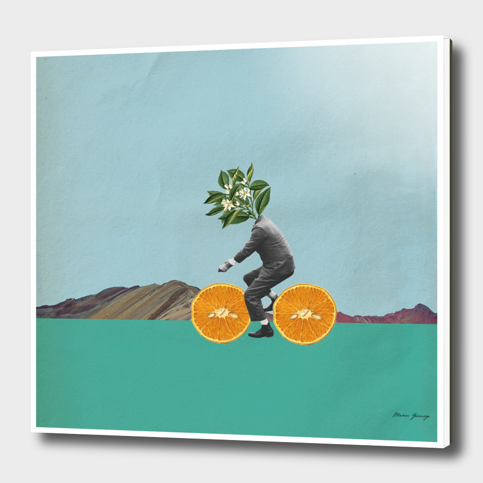 the orange cyclist
