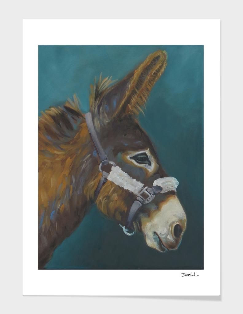 Grand Noir Donkey