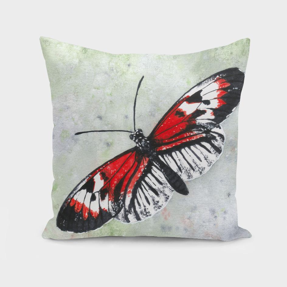 Piano key butterfly (Heliconius melpomene)
