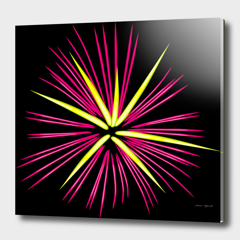 fireworks pink red yellow black sky happy new year