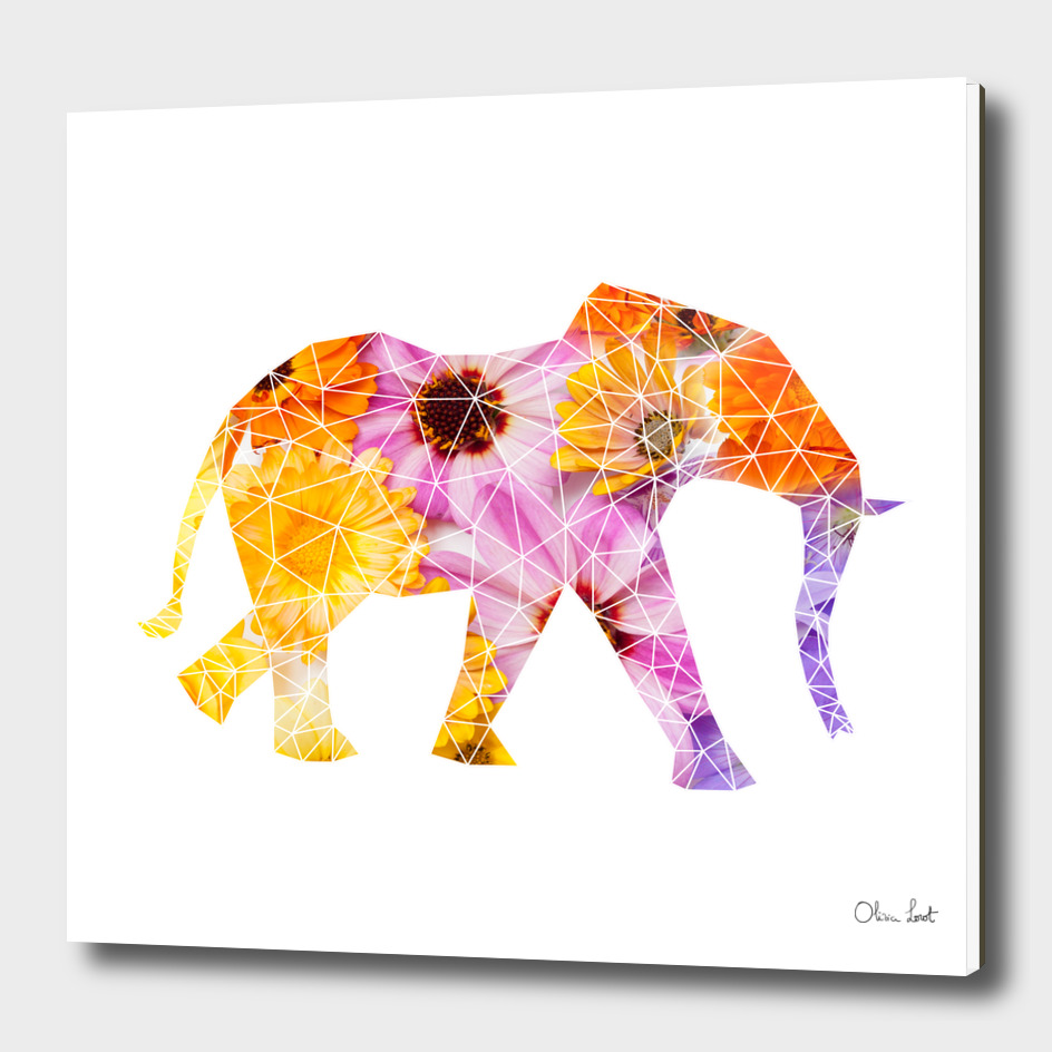 Geometrical elephant with flowers