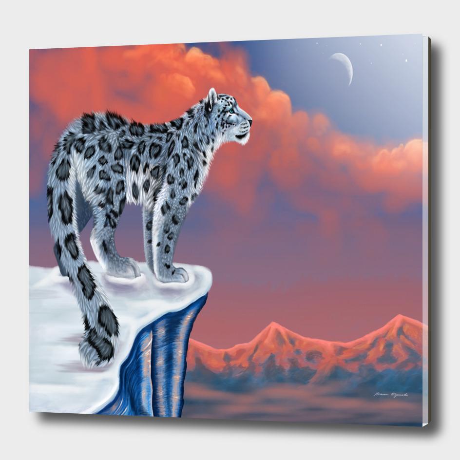 lion tigel chetah animals snow moon blue sky