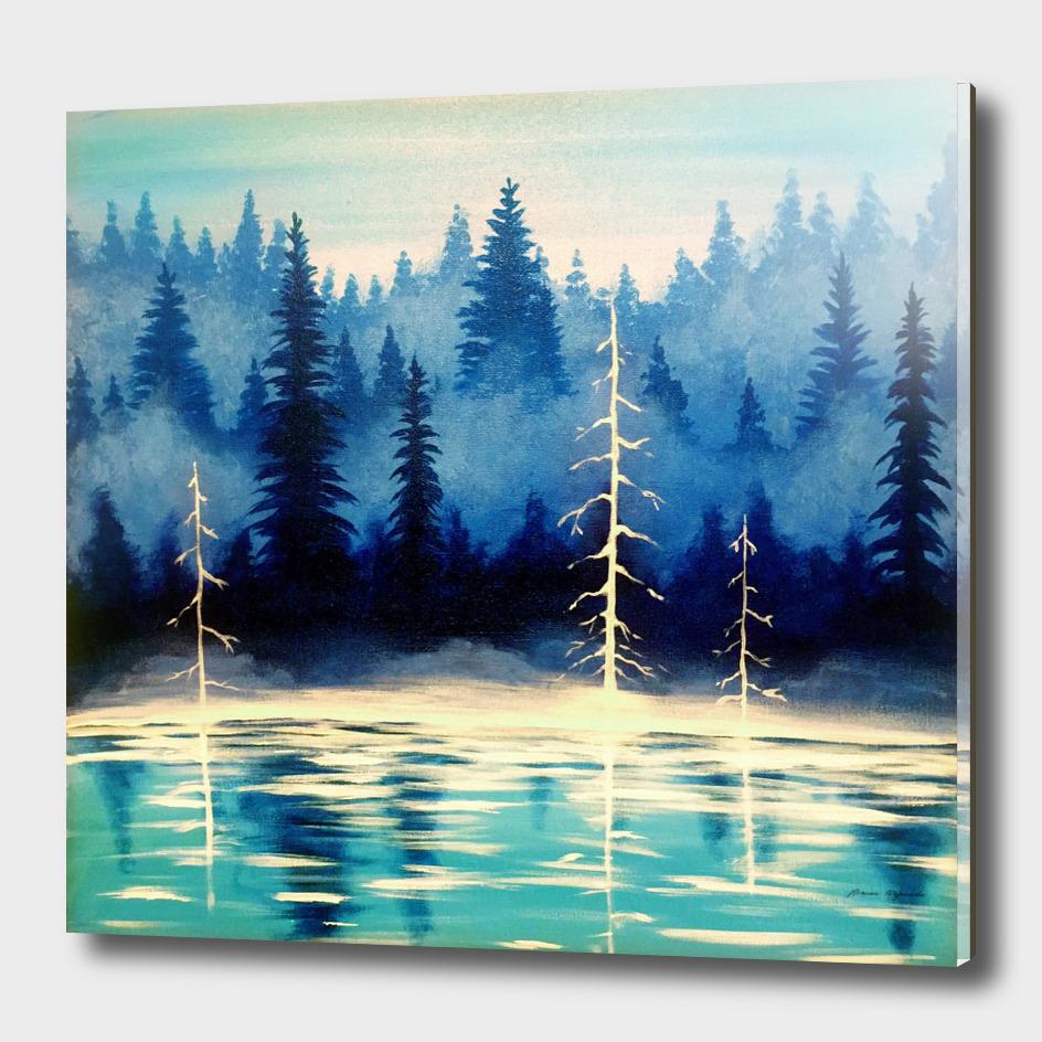 Misty Forest Lake