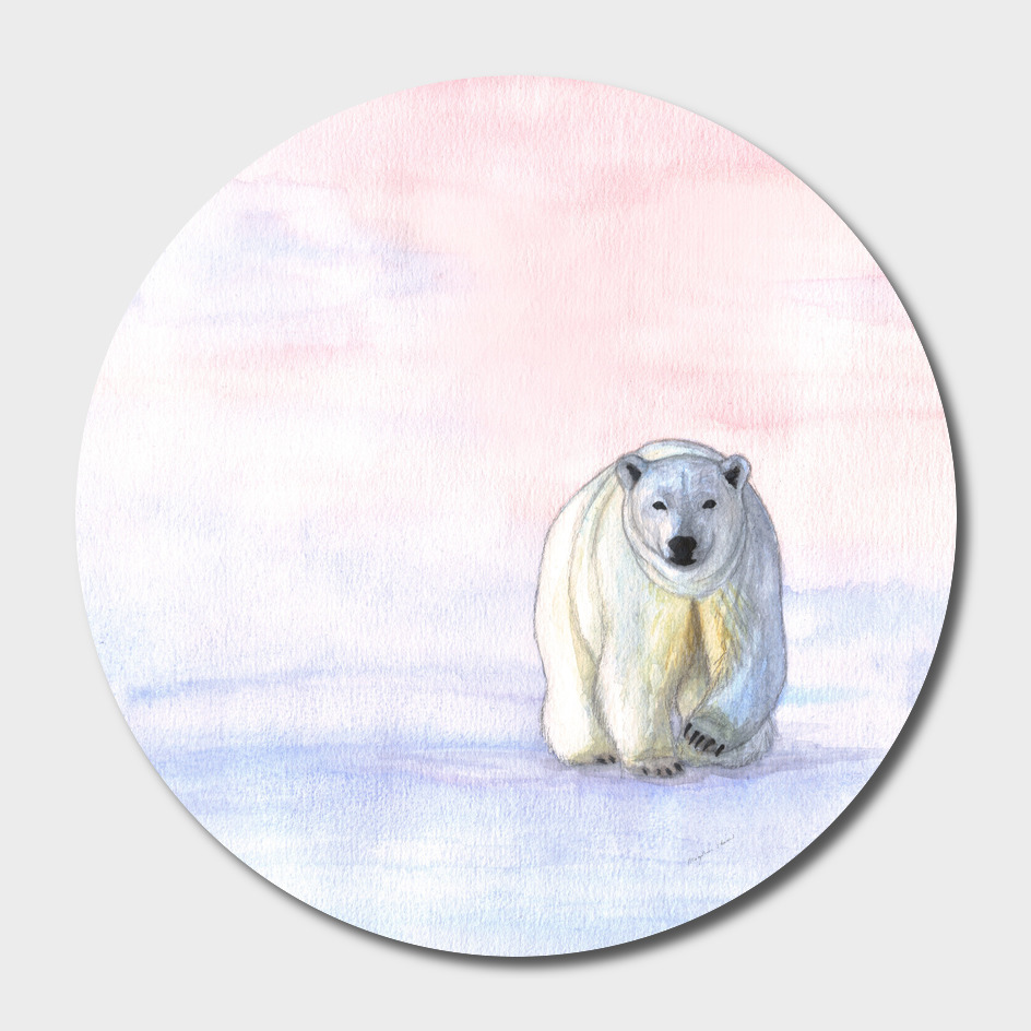 Polar bear in the icy dawn