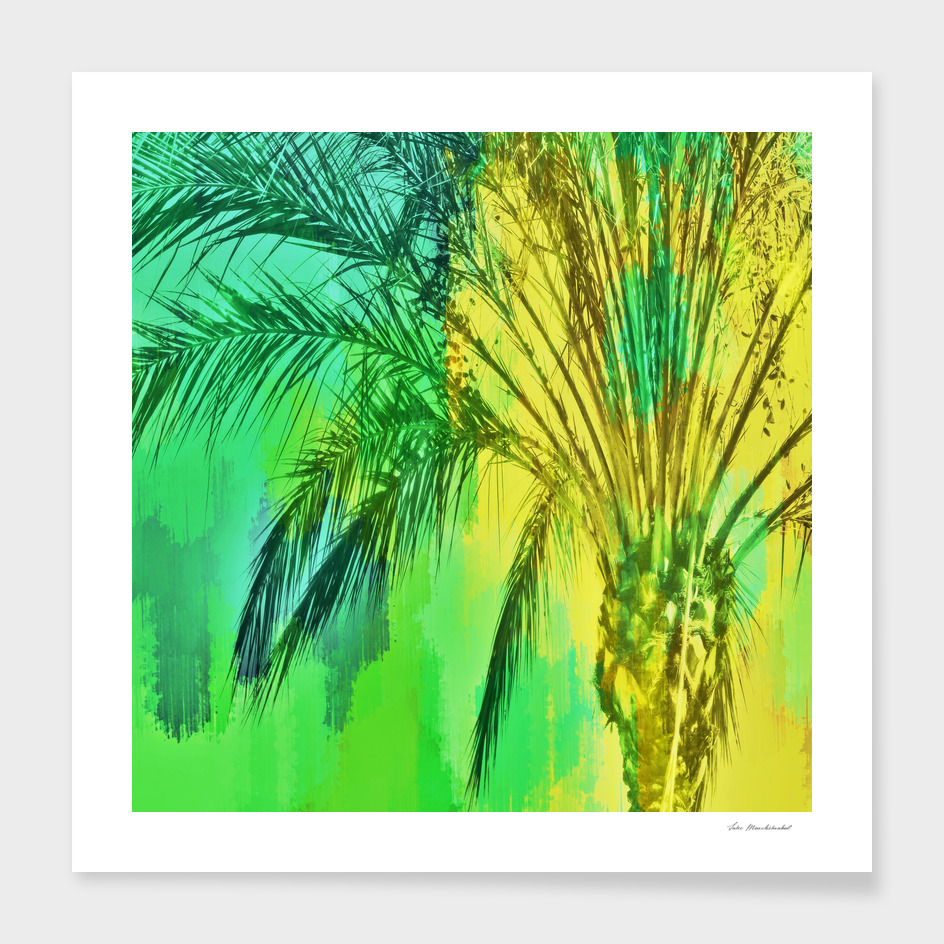palm tree with splash painting abstract in green yellow
