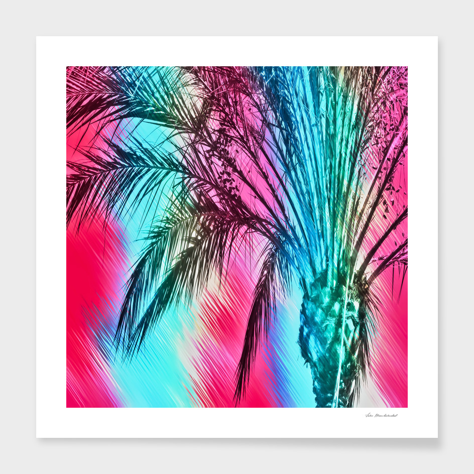 palm tree with splash painting abstract in pink blue yellow