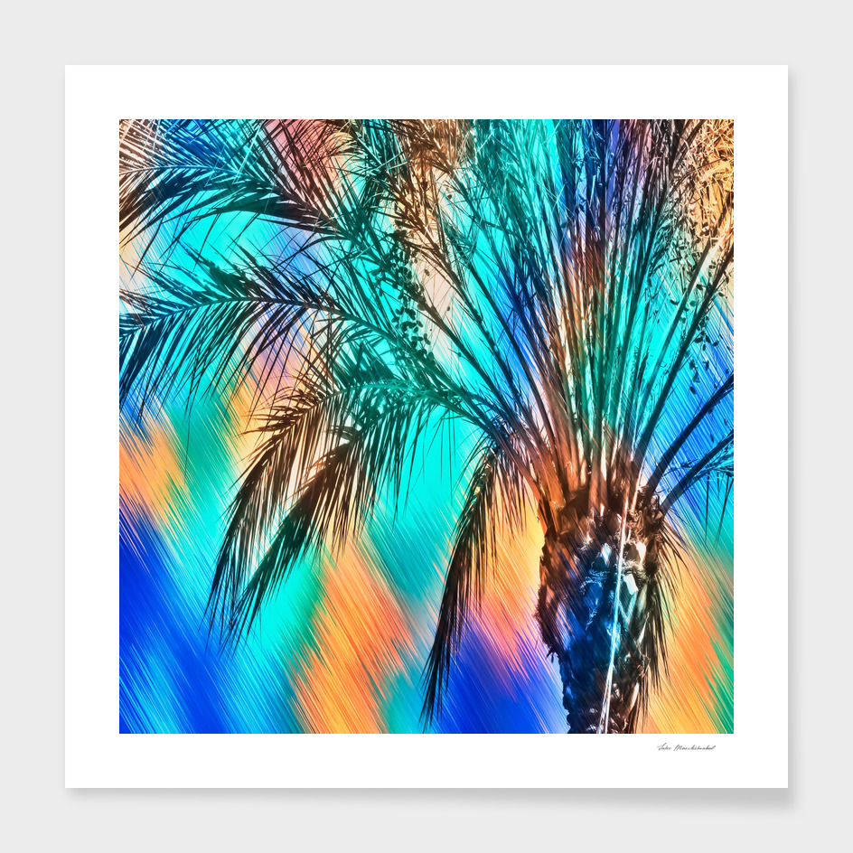 palm tree with splash painting abstract in blue brown green