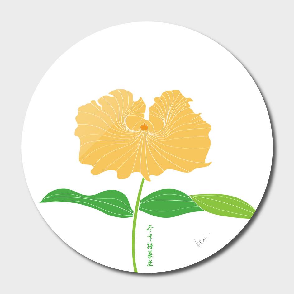 Cattleya trianei