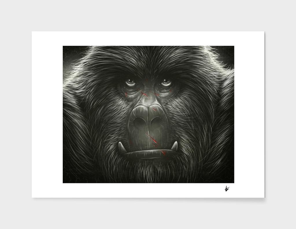 Kong!