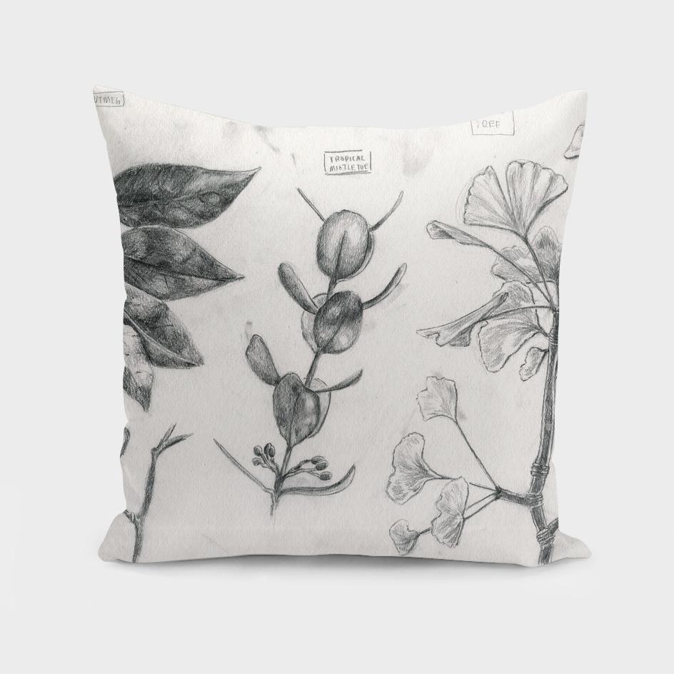 Nutmeg, Peanut Plant, Tropical Mistletoe, and a Ginko Tree