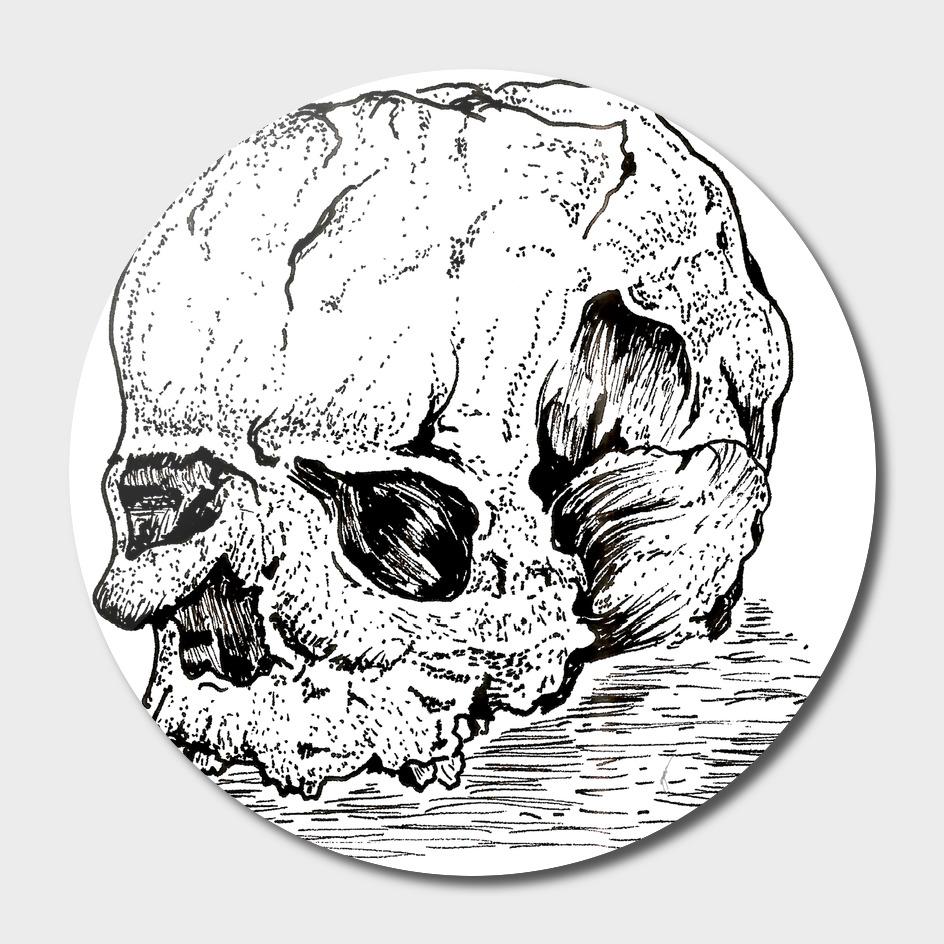Sketch 41 - Skull