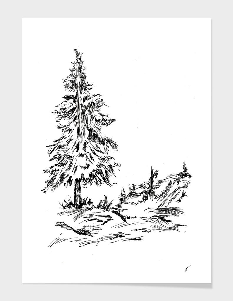 Sketch 46 - Tree