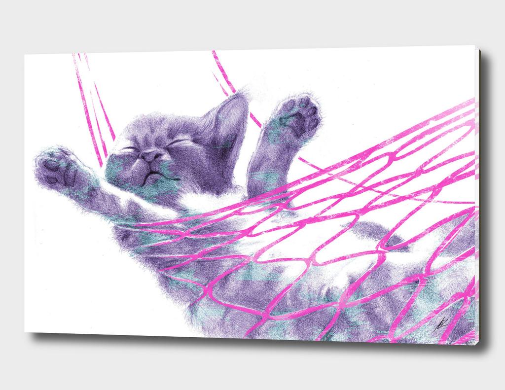 Kittenpink