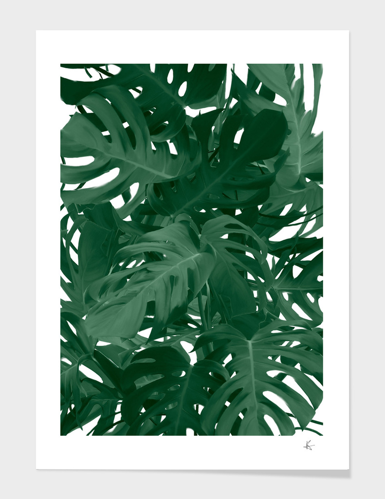 monstera jungle painting