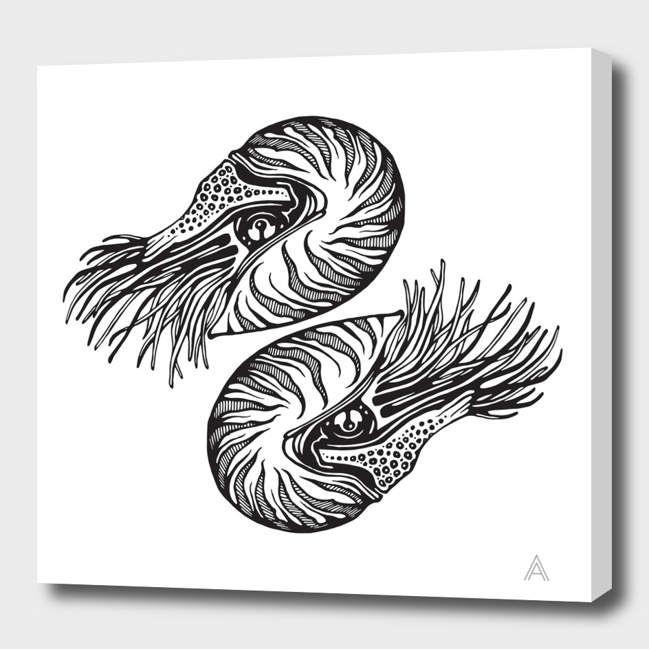 Nautilus (black)