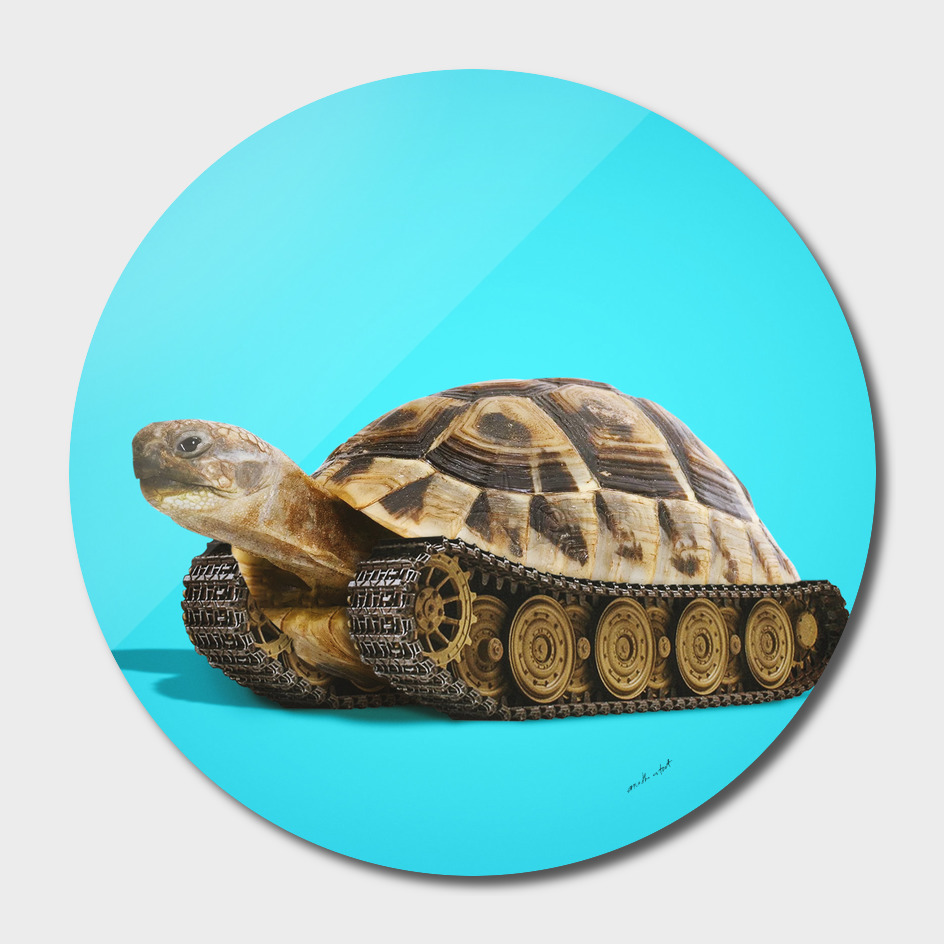 Tortoise Tank