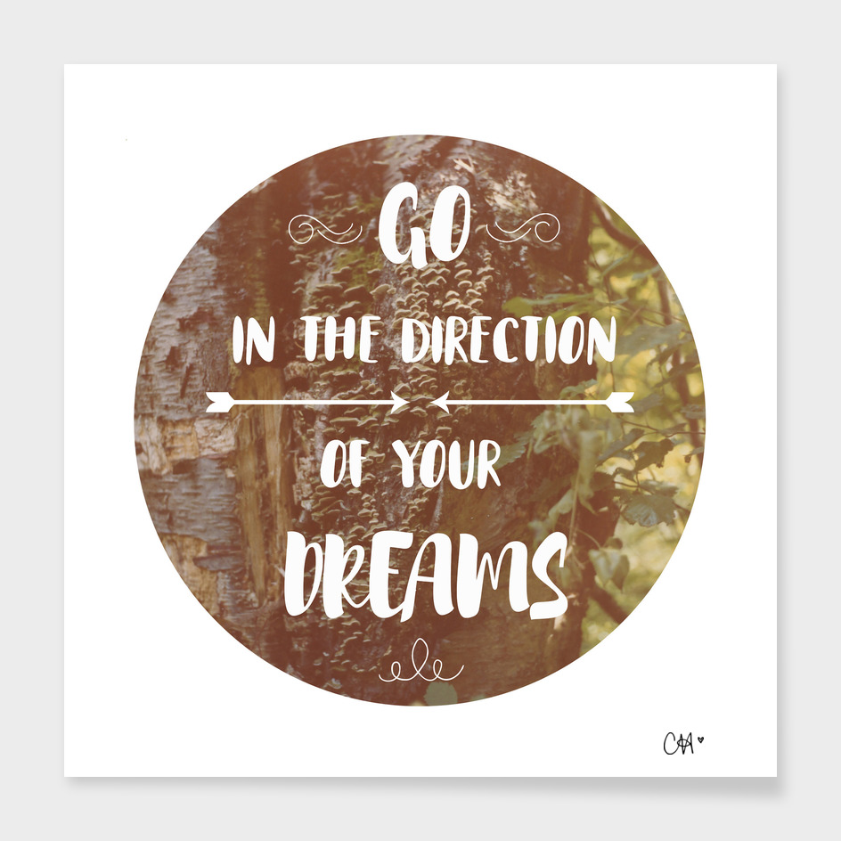 Go in the Direction of Your Dreams