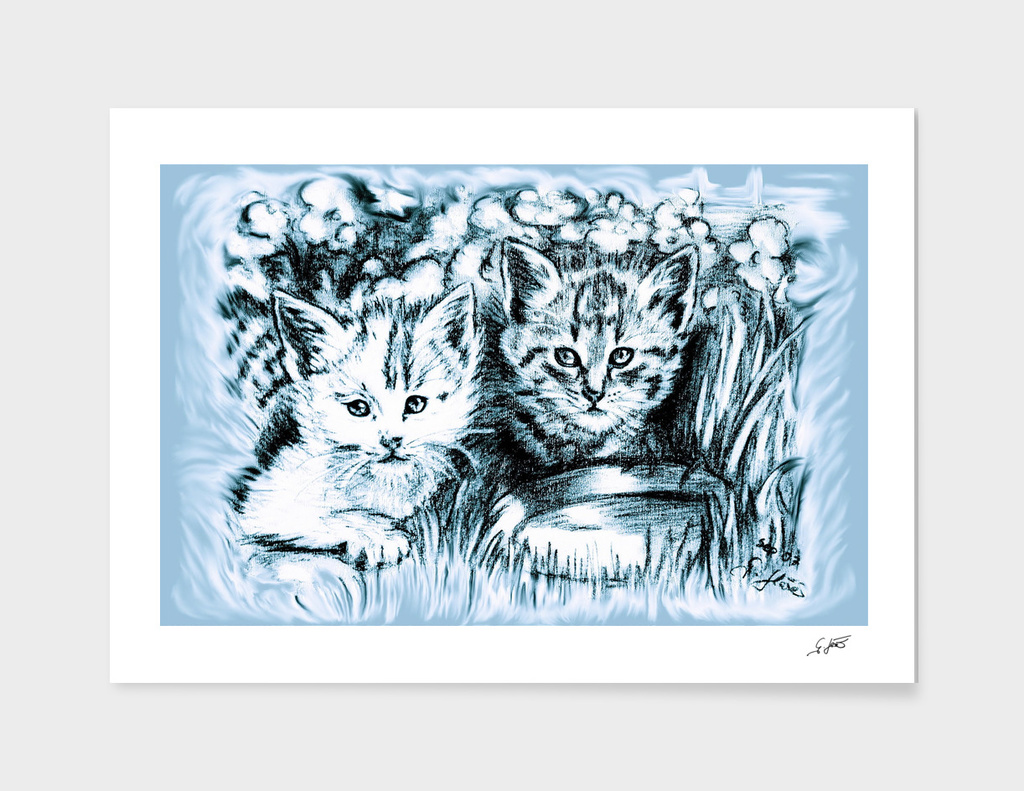 Blue Baby Cats