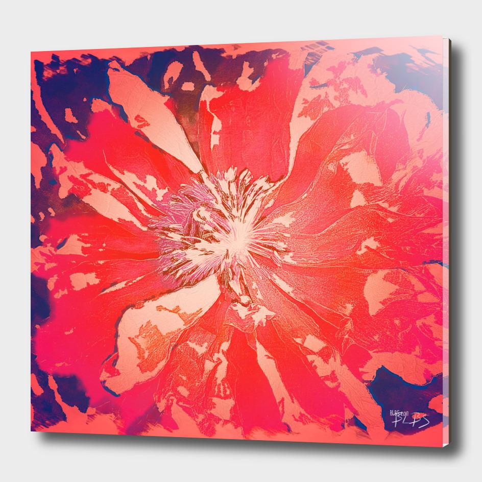 Paradise - Poppy Series No.3