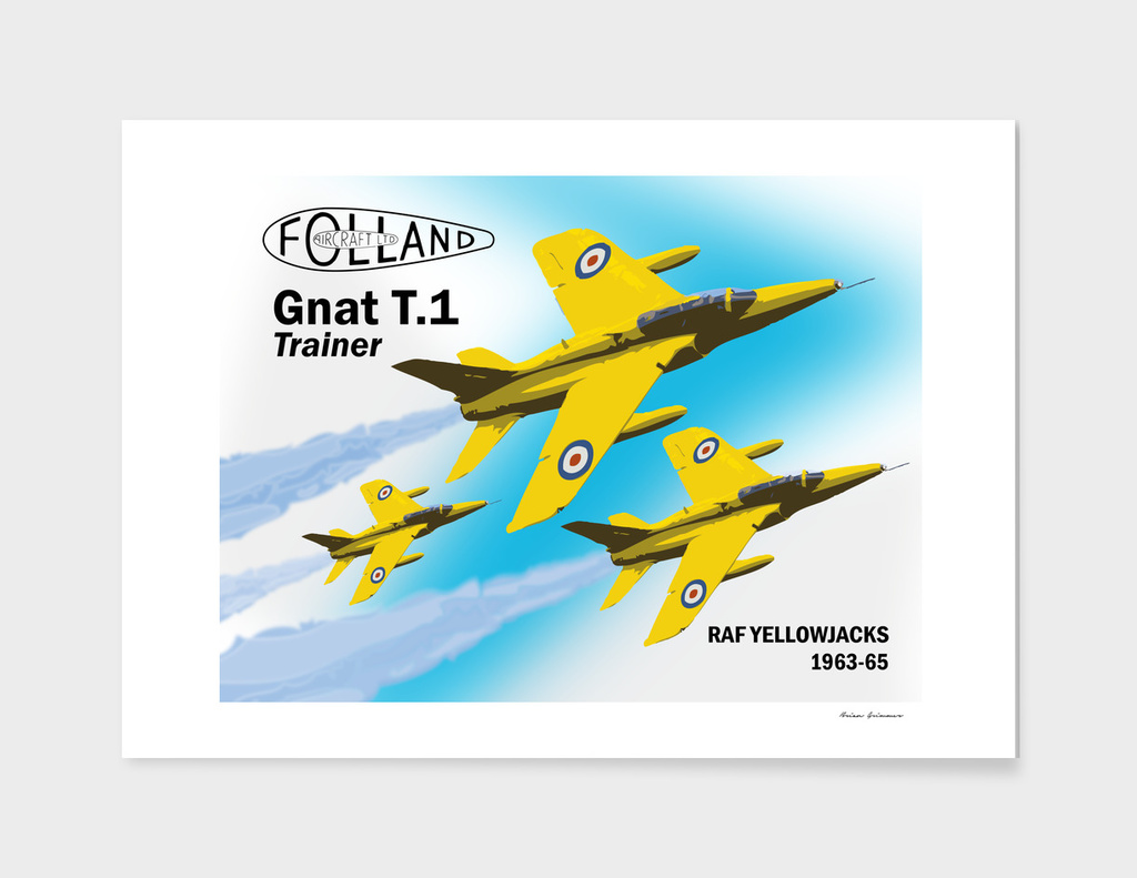 RAF Yellowjacks - 1963-65