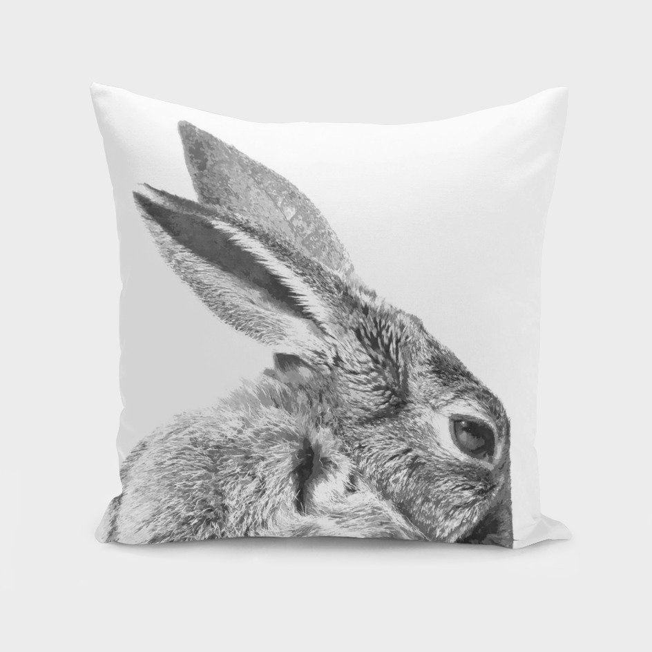 Black and White Rabbit