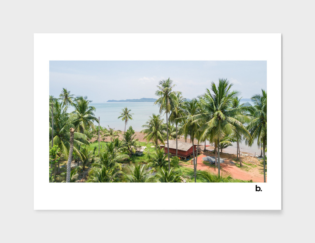 Tropical Island. Tranquilly Seascape. Above the Palms.