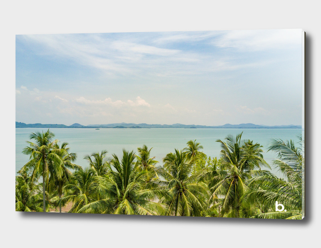 Seascape over the palms, Tropical Island. Aerial Top View