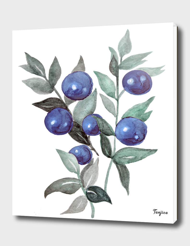 winter berries blue