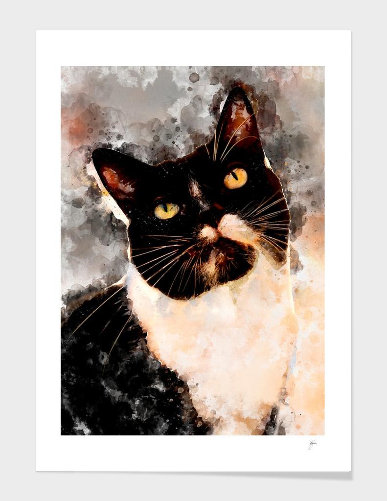 Cat Jagoda art