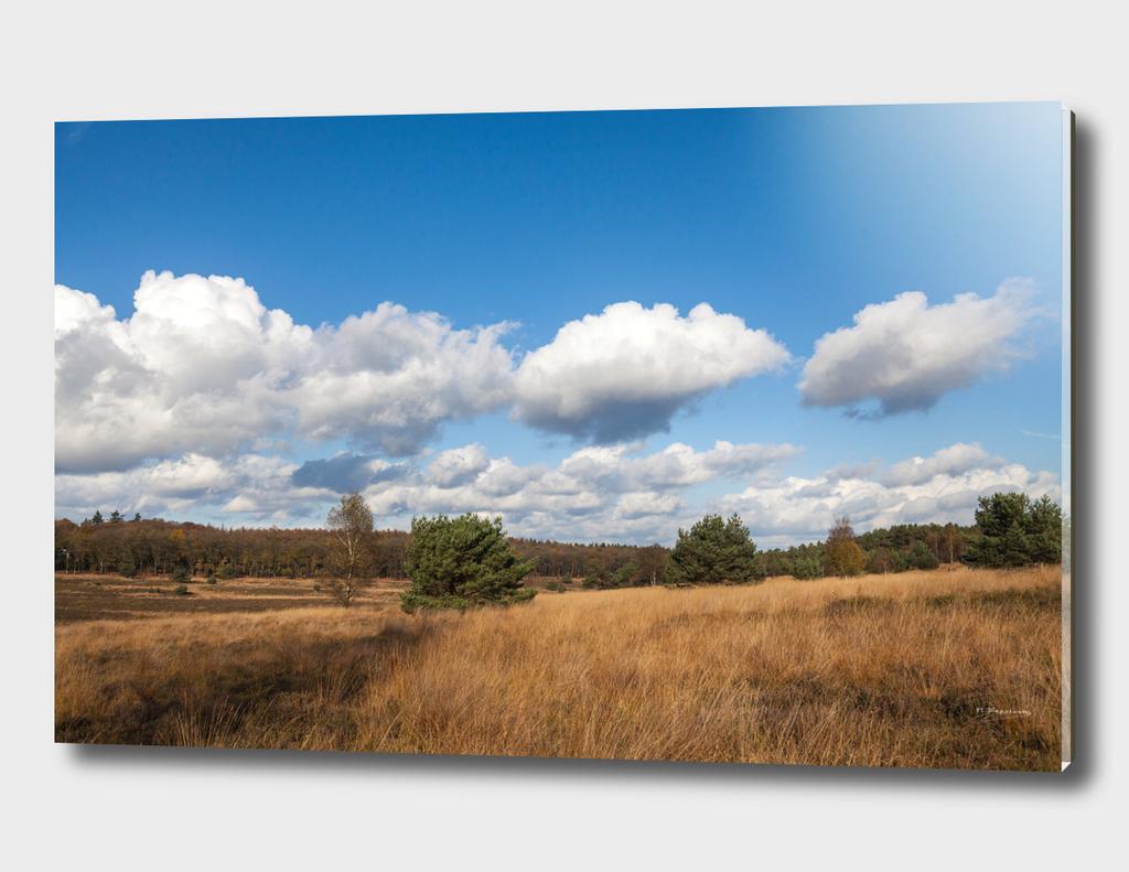 Beautiful clouded landscape at Het Leesten, Gelderland