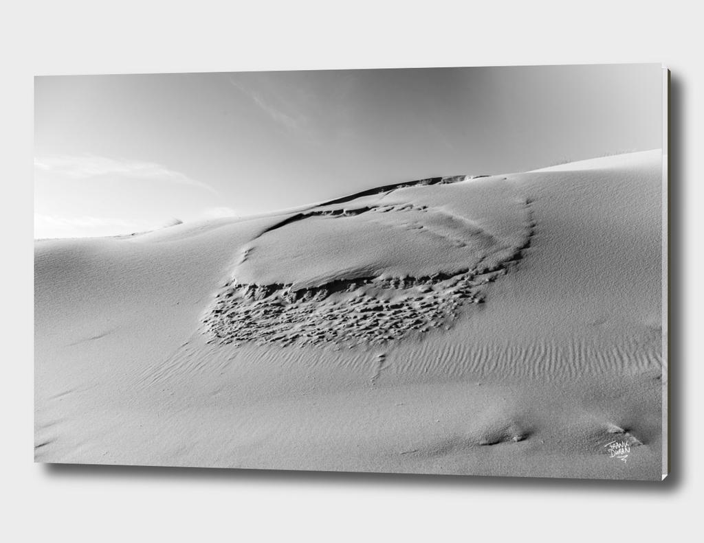 Dune #3