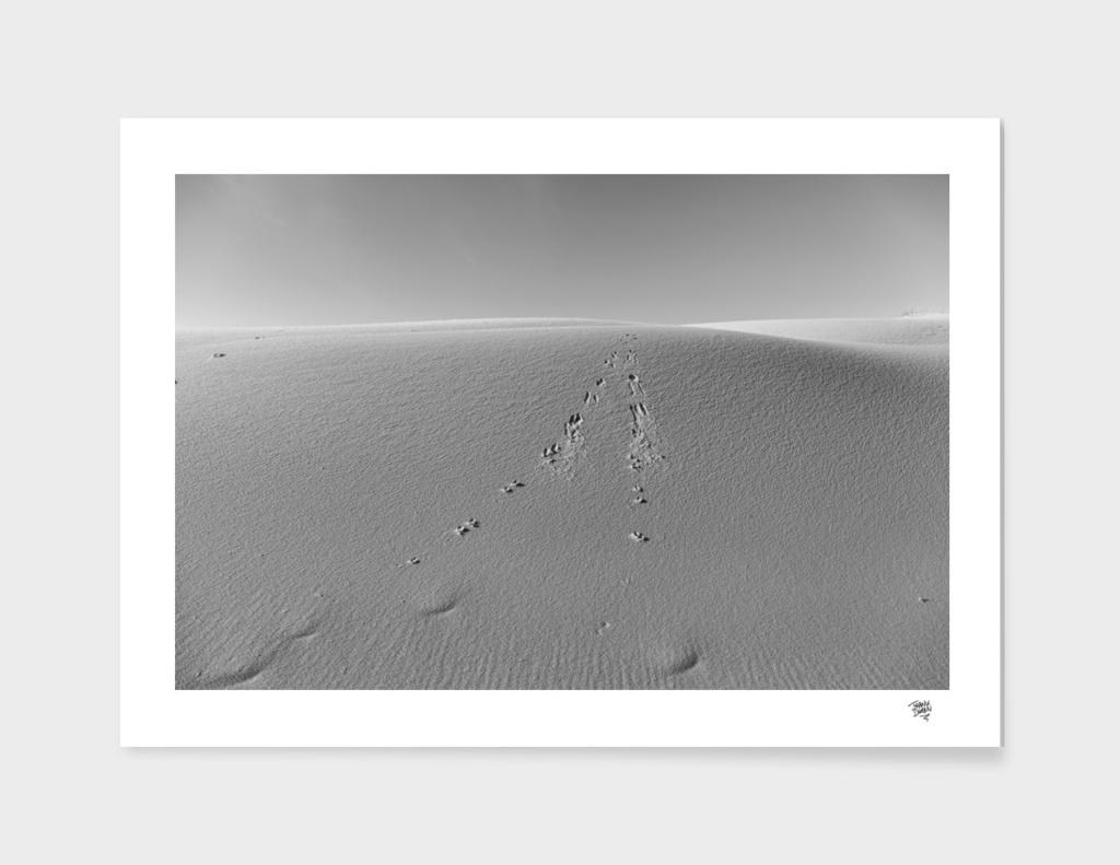 Dune #2