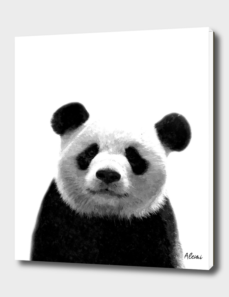 Black and White Panda