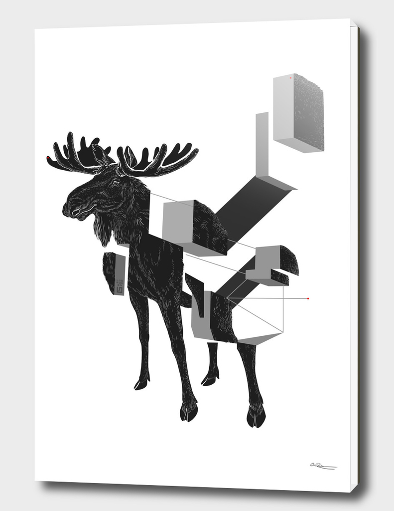 moose_deconstructed