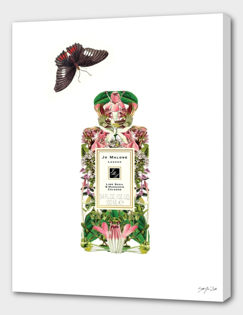 Jo Malone - Lime, Basil, and Mandarin