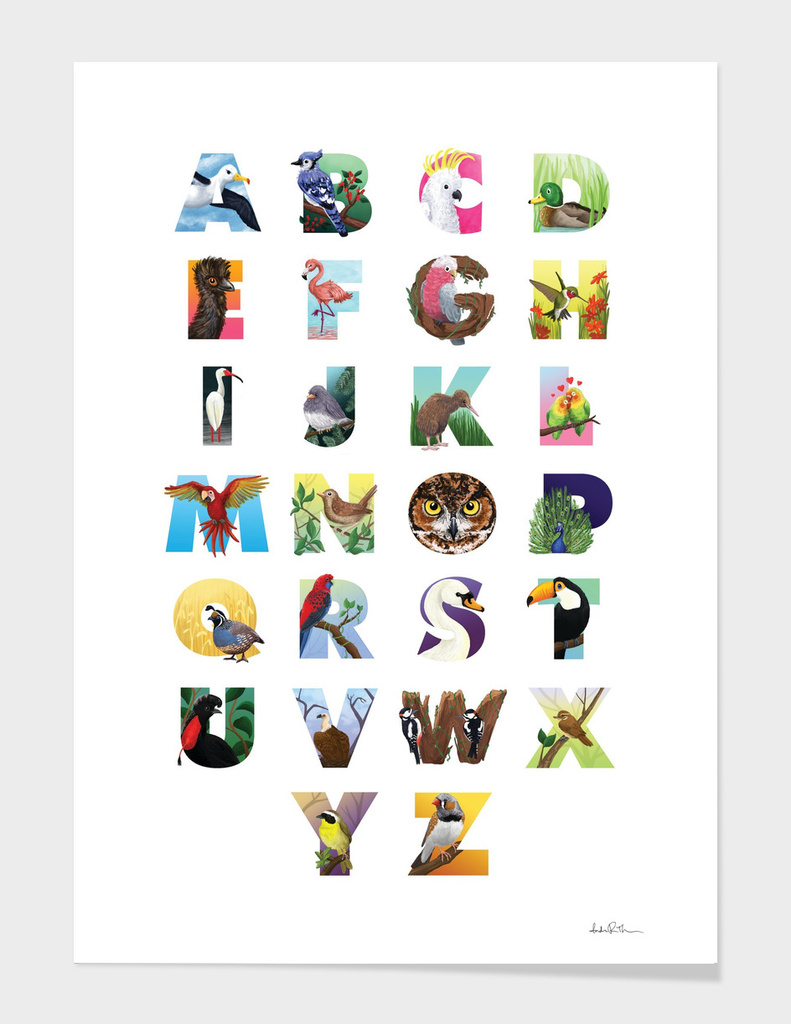 Alphabet Illustrated Bird Poster