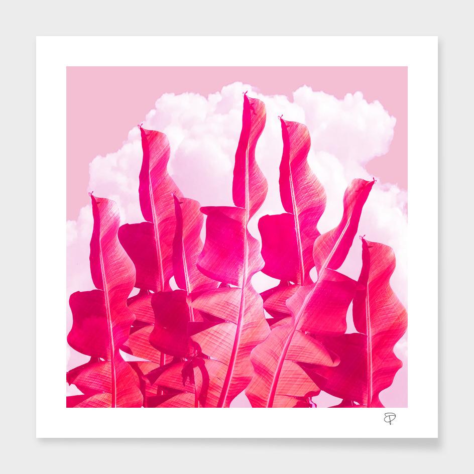 Candyfloss Sky