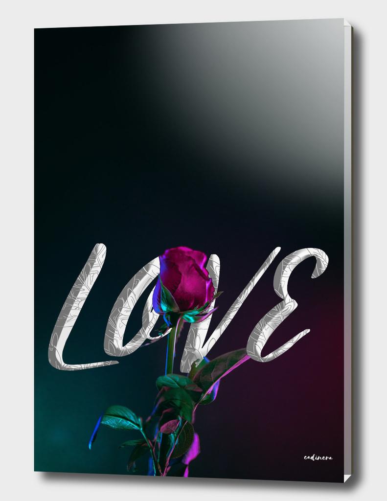 Tonight is Love
