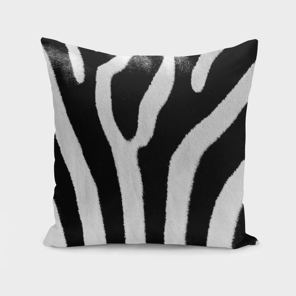 Black And White Zebra Skin