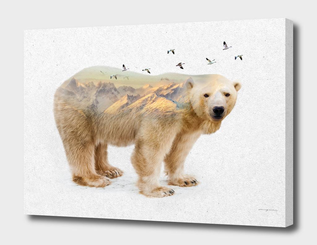 Wild I Shall Stay | Polar Bear