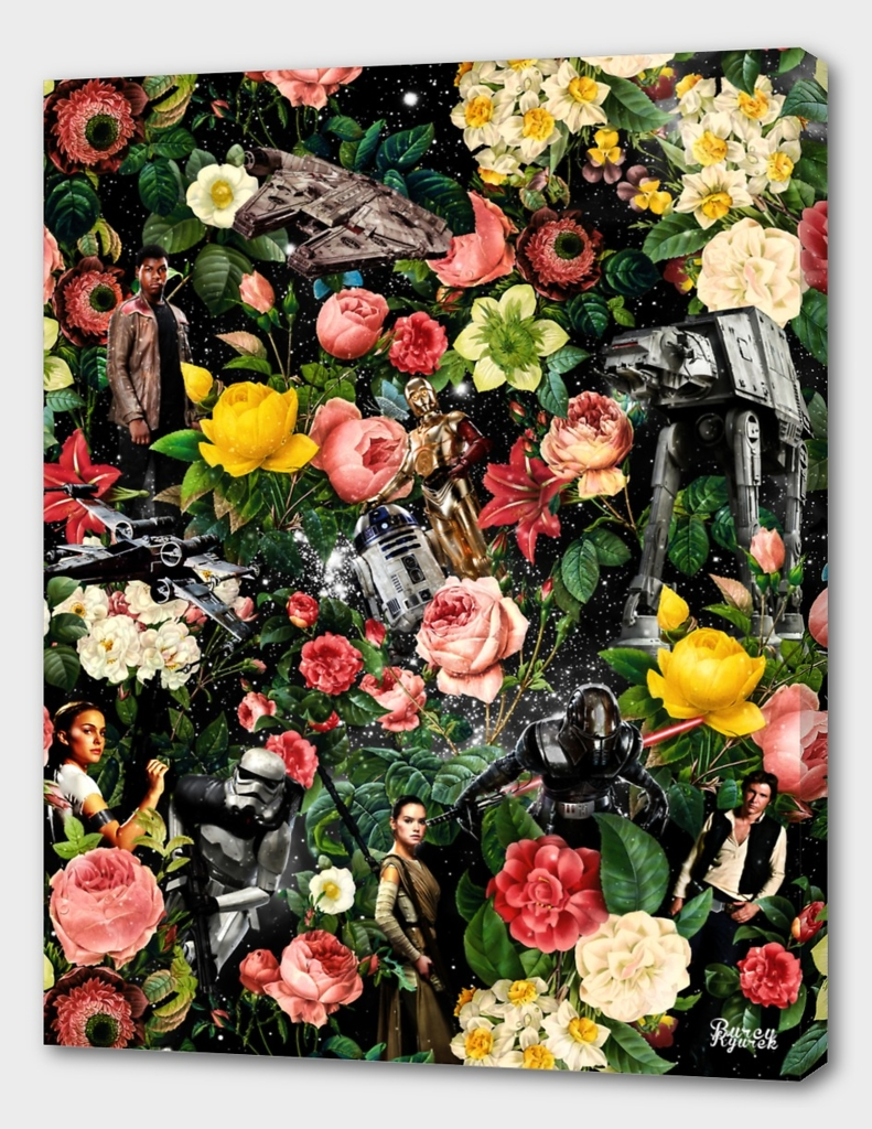 1977-2016 Starwars and Floral Pattern