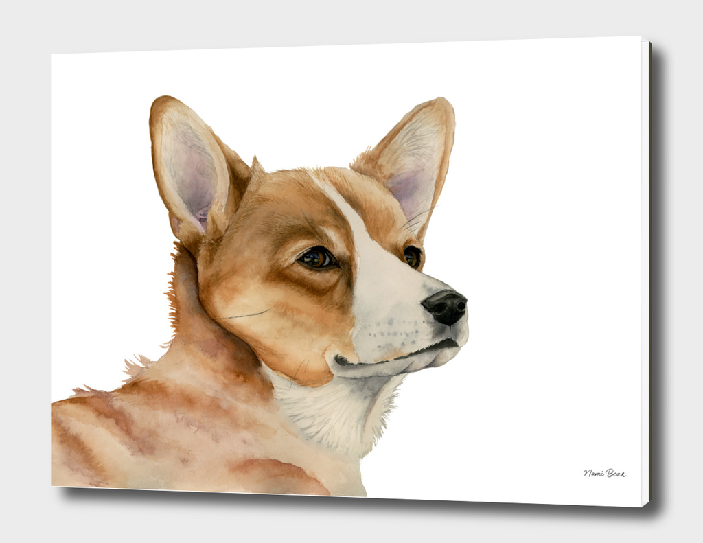 Welsh Corgi Dog Painting