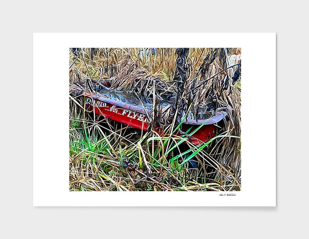 Radio Flyer Wagon