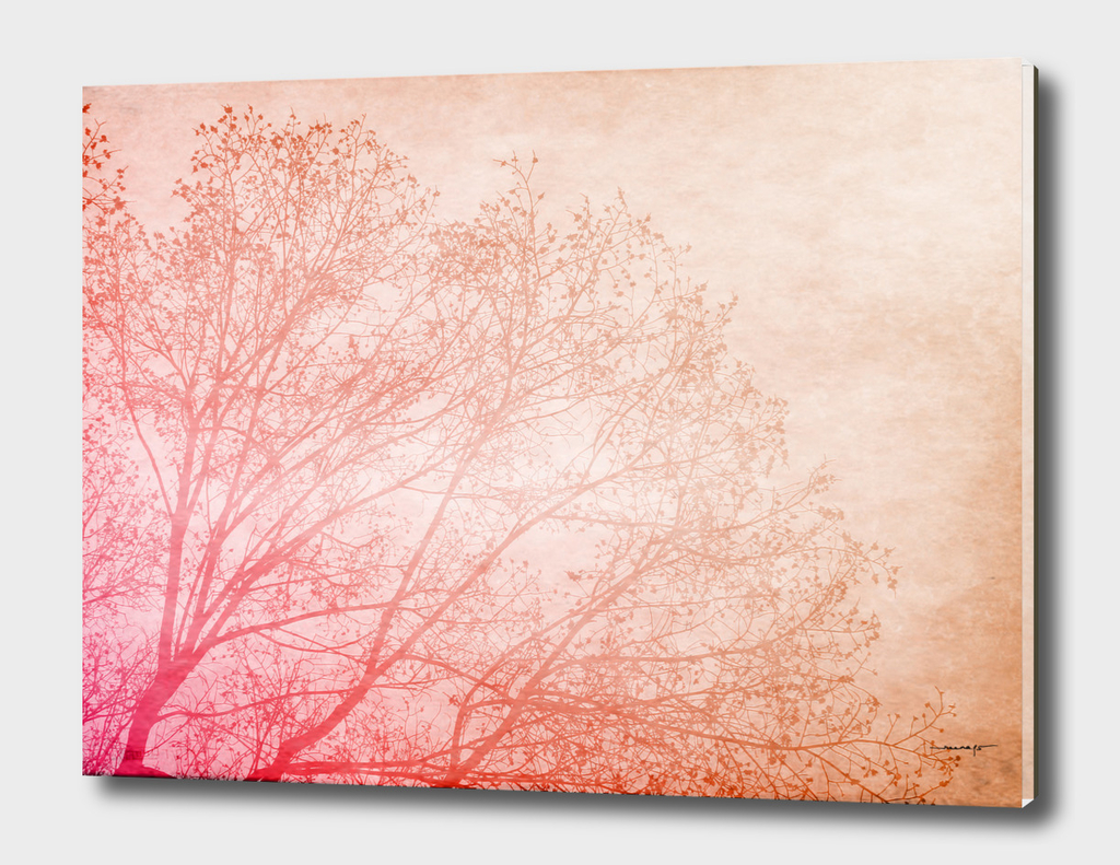 Pink, Brown and the Tree