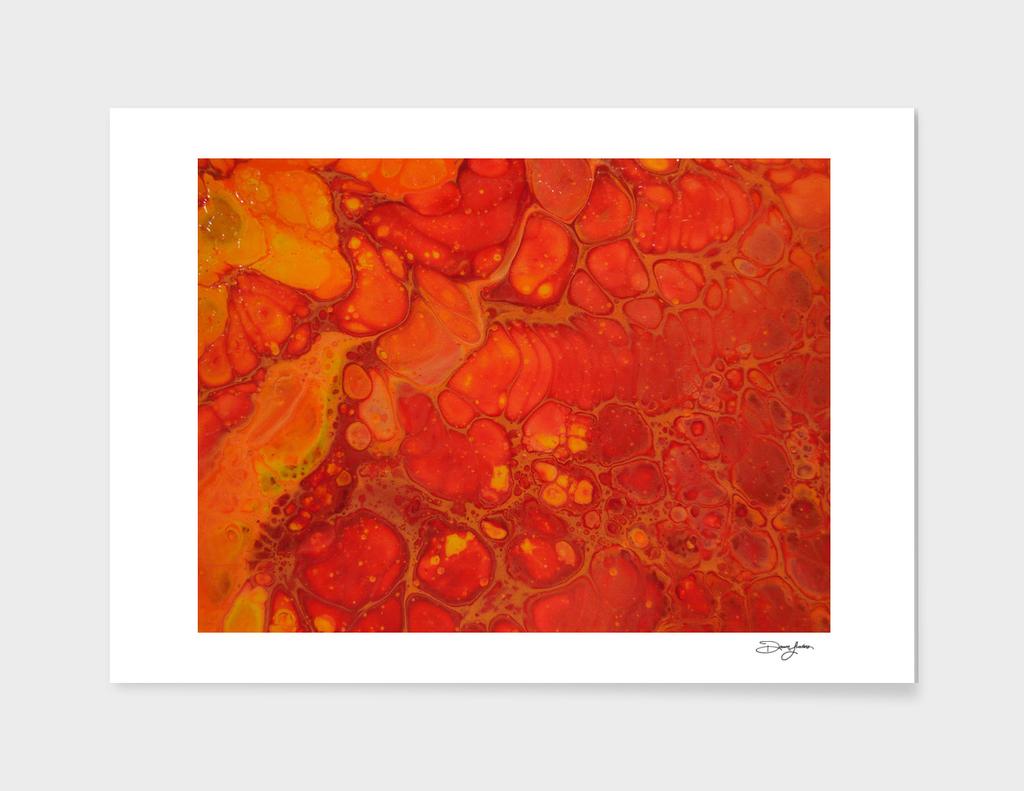 Close up of Orange on Orange 2
