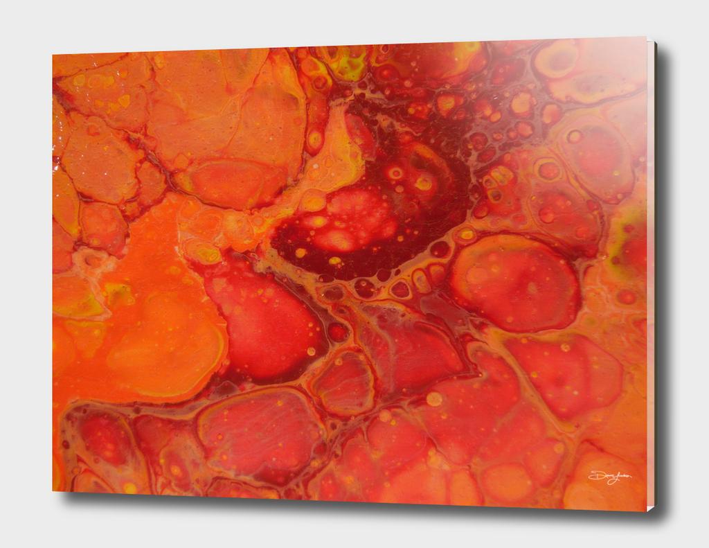 Close up of Orange on Orange