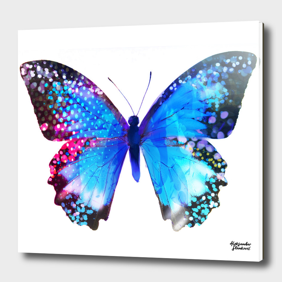 Blue Butterly