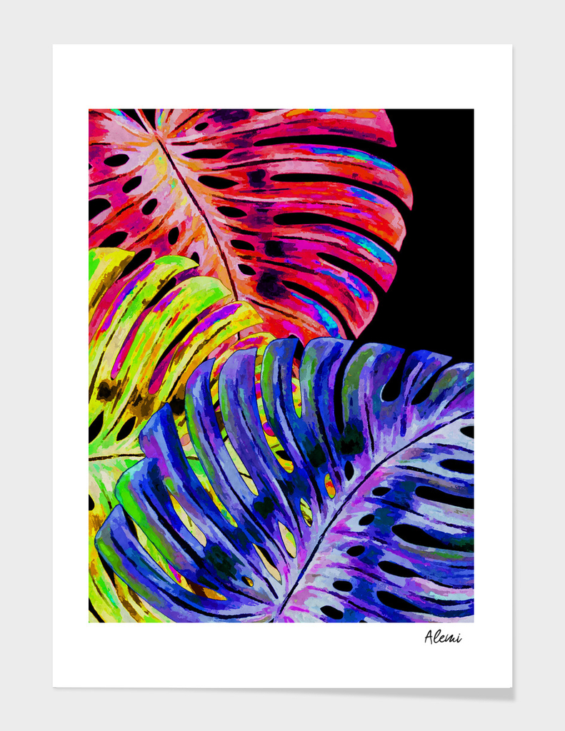 Colorful Monstera Black Background