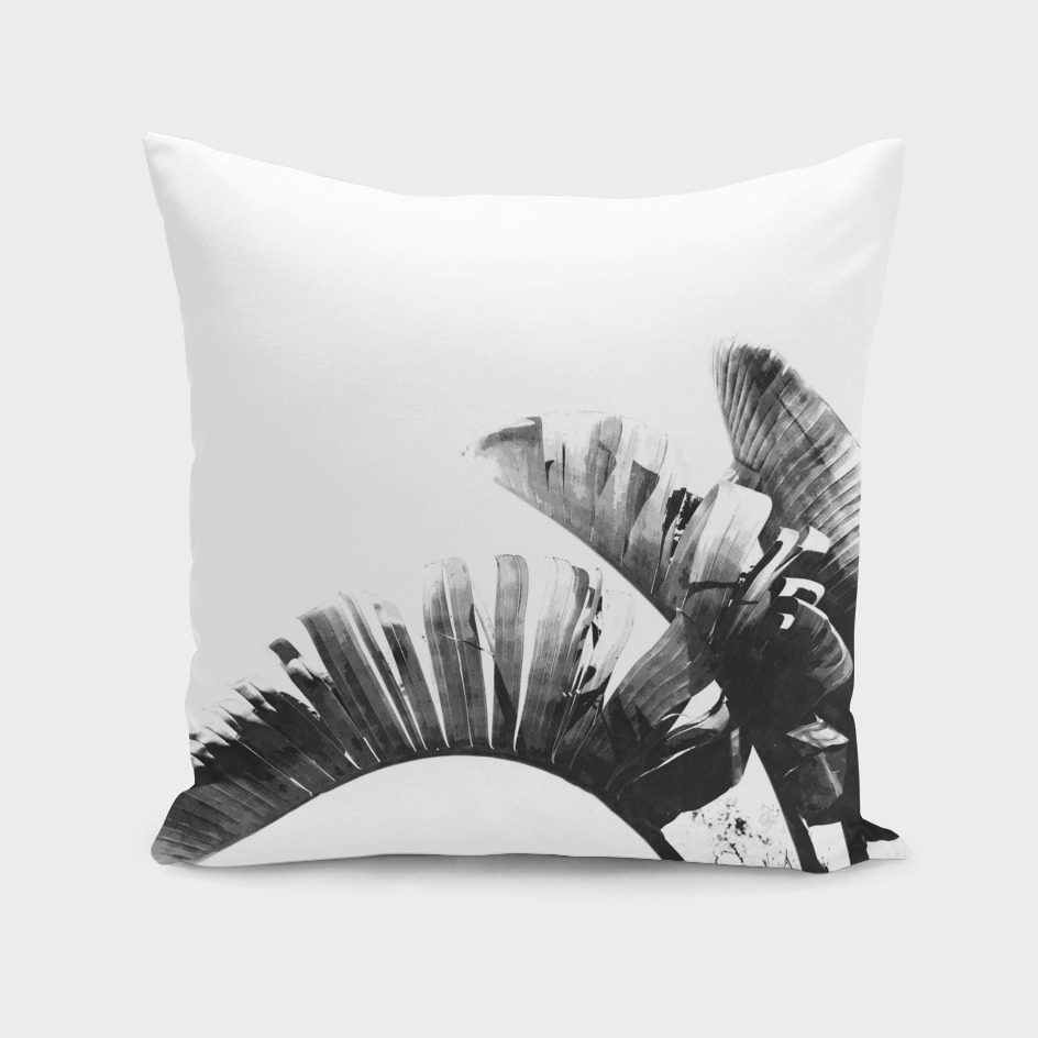Black and White Palm Leaves